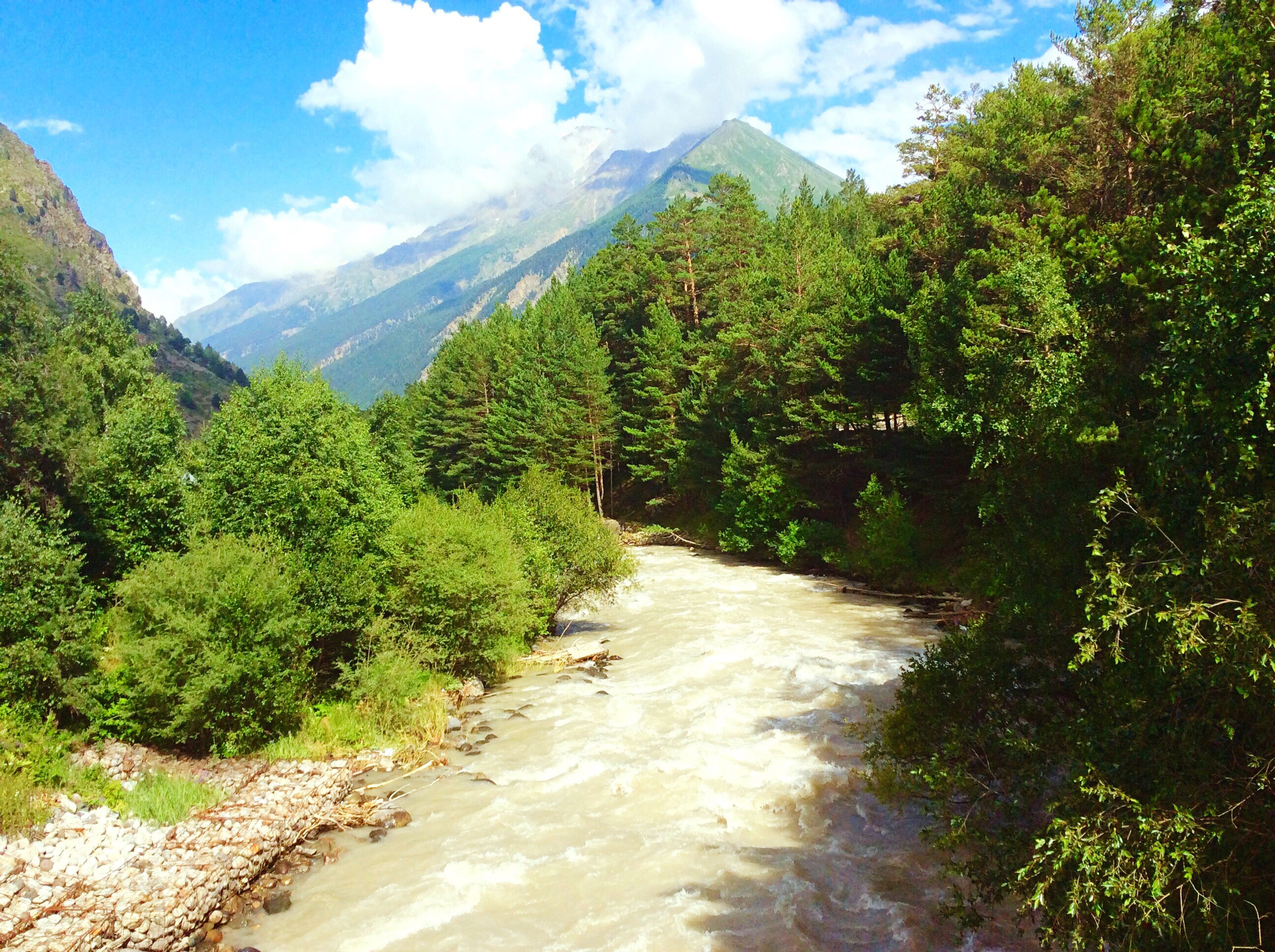 mountain, tree, tranquil scene, the way forward, scenics, tranquility, plant, growth, nature, sky, green color, beauty in nature, non-urban scene, mountain range, remote, cloud - sky, day, water, outdoors, stream, solitude, green, countryside, diminishing perspective, narrow, empty road, long, valley, majestic