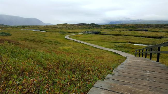 Beauty In Nature Boardwalk Cloud - Sky Field Footpath Grass Grassy Green Color Growth Landscape Long Mountain Nature Non-urban Scene Outdoors Pathway Pingvellir Scenics Sky The Way Forward Thingvellir National Park Tourism Tranquil Scene Tranquility Travel Destinations