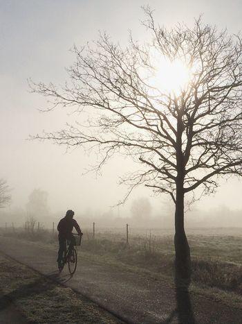 The fog   the sunrise   the bike rider Silhouette Landscape_photography EyeEm Nature Lover Landscape_Collection Sunrise Sunrise_sunsets_aroundworld EyeEmbestshots AMPt_community Foggy Morning Bike