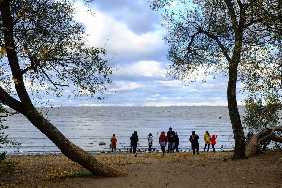 Adult Adults Only Beach Beauty In Nature Cloud - Sky Day Gulf Gulf Of Finland Horizon Over Water Leisure Activity Men Nature Only Men Outdoors People Real People Russia Saint Petersburg Scenics Sea Sky Tree Water