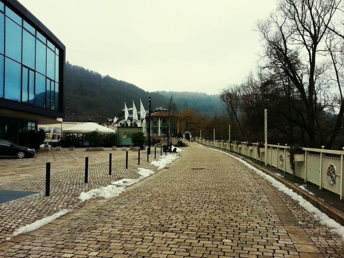 Marburg An Der Lahn Rosepark Firstday2015