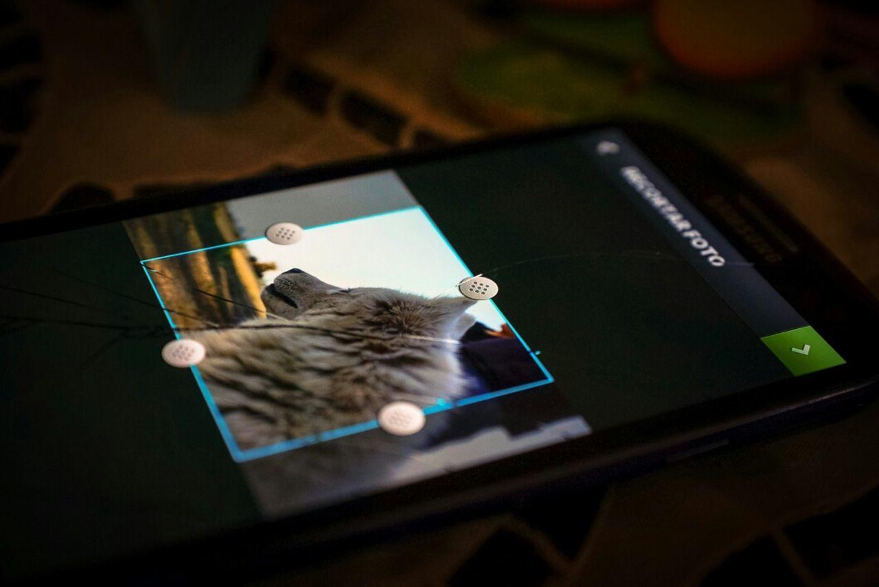 Smart Phones  Photo