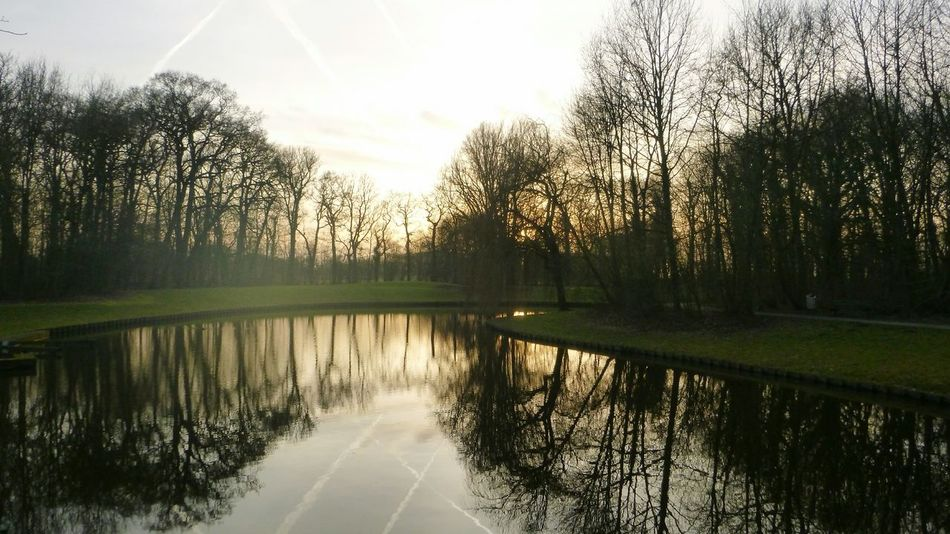Sunset Reflection Water Nature Sun Sky Sunlight Tree Lake Outdoors No People Tranquility Beauty In Nature Landscape Day Forest Ekenstein EyeEm Nature Lover Appingedam Groningen Holland Holland
