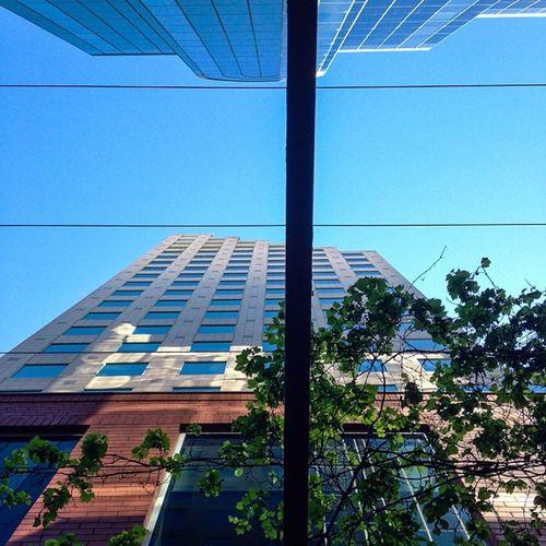 Sundayadventures Perspectivephotog @abstractturtles