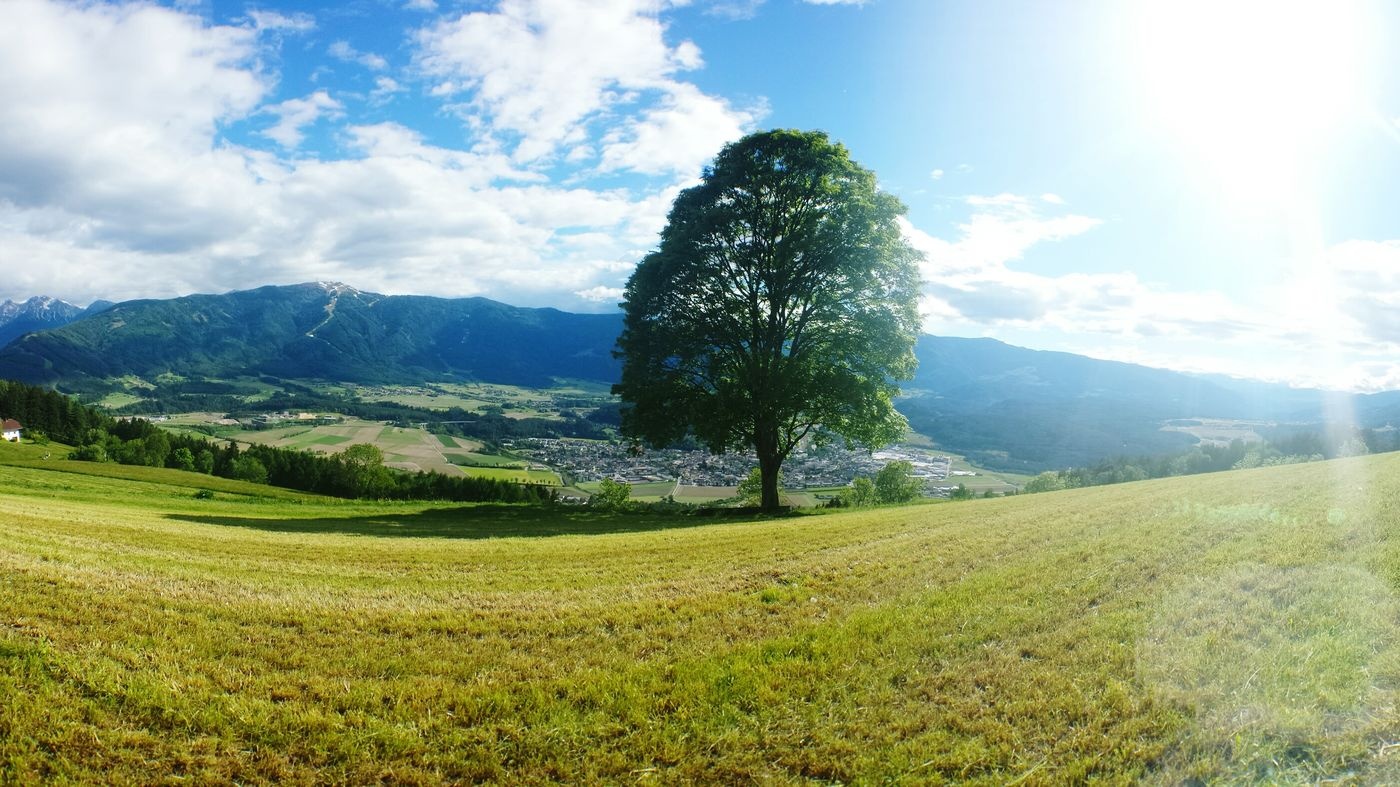 My Smartphone Life Naturelovers Nature_collection Great Views Bruneck Tree Lonelytree Clouds Cloudsporn Skylovers
