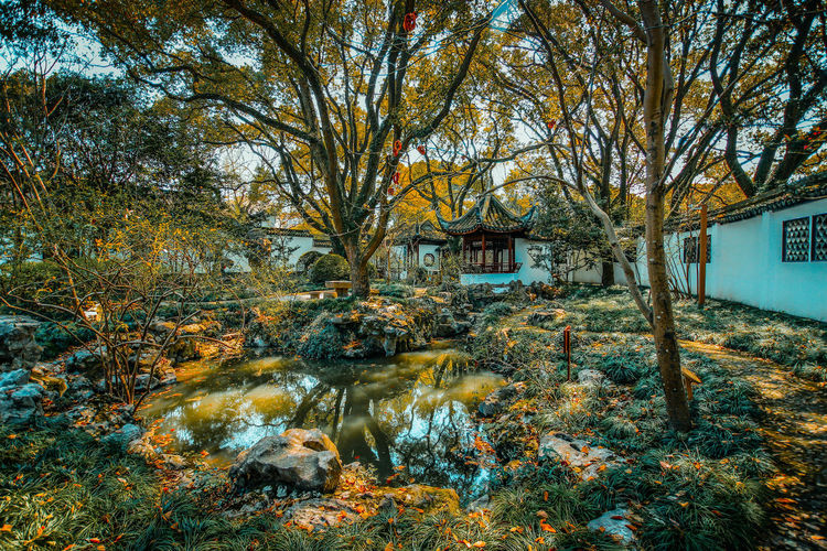 Architecture Beauty In Nature Building Exterior Built Structure Chinese Style EyeEmNewHere House Nature No People Outdoors Tree Water