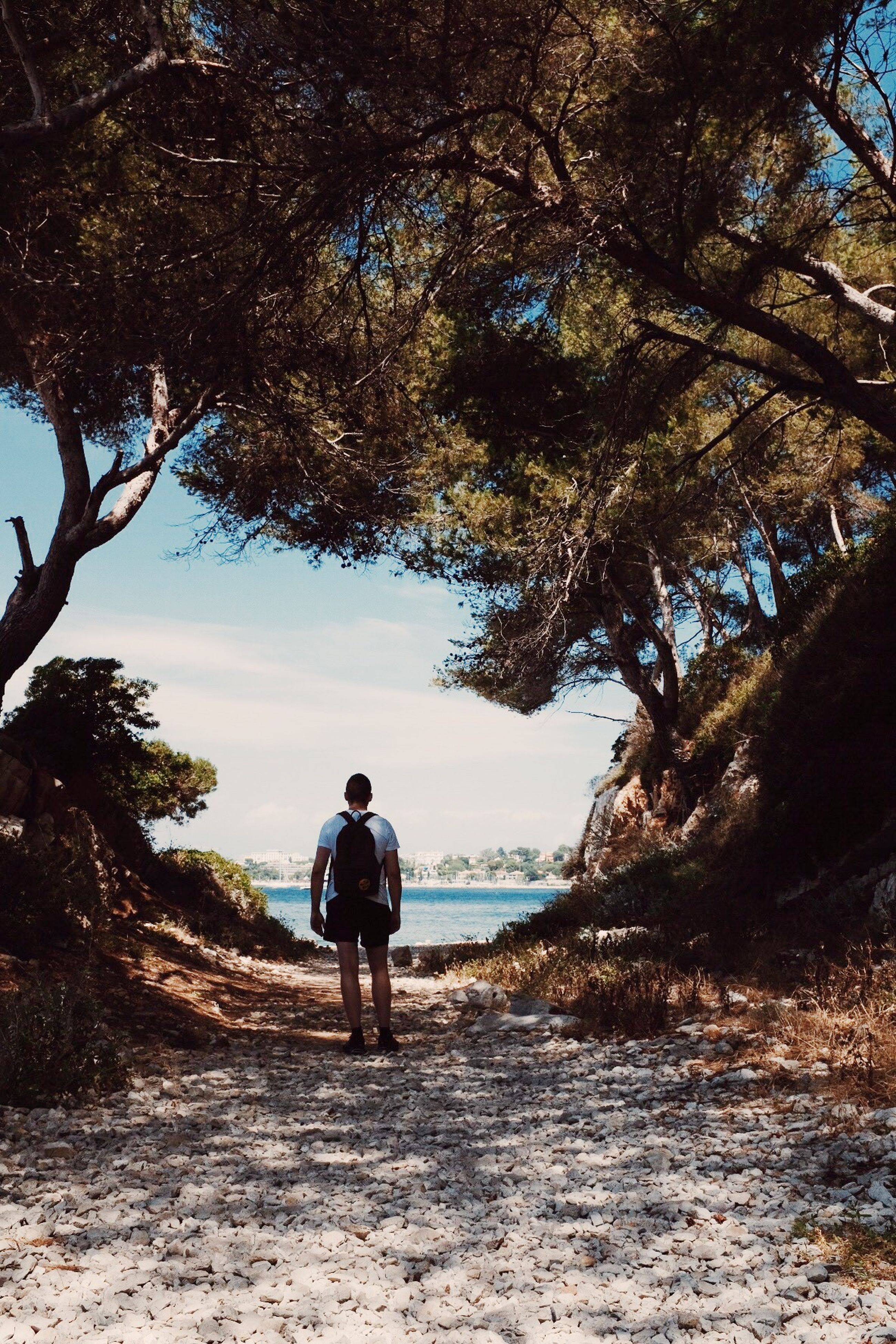 rear view, real people, tree, one person, full length, nature, beauty in nature, leisure activity, scenics, standing, lifestyles, tranquil scene, casual clothing, men, day, outdoors, landscape, sky