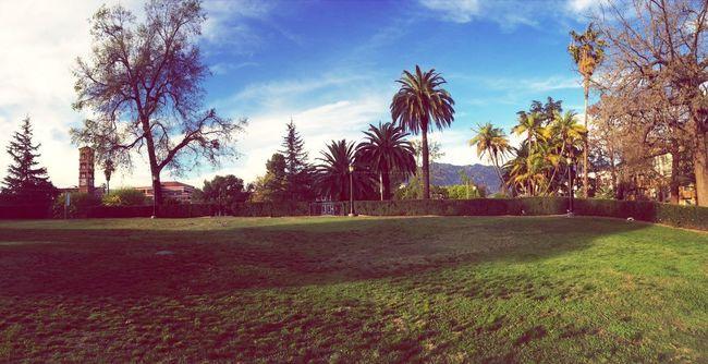 Walking Around Pasadena