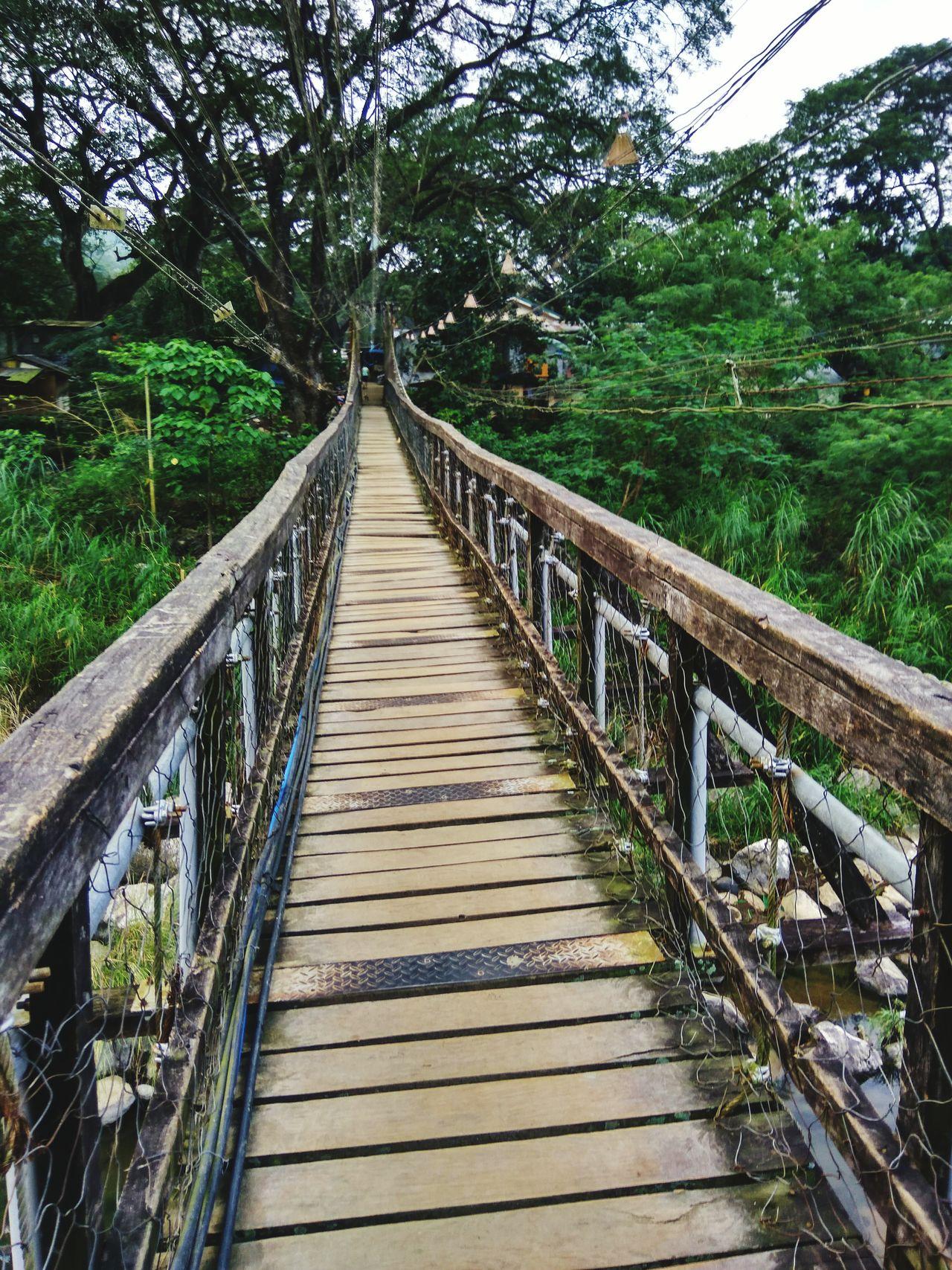 Bridge Footbridge Nature Mt. Pamintinan Road Relax Tree Rizal