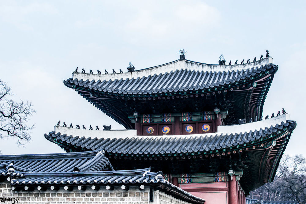 Architecture Built Structure Cultures Travel Korean Traditional Architecture Korea Tradition Asian Culture Changduk Palace Seoul Trip Korean Style Seoul ASIA History Palace Day Korea Temple Low Angle View Palace Of Culture Korea Traditional Architecture Religion