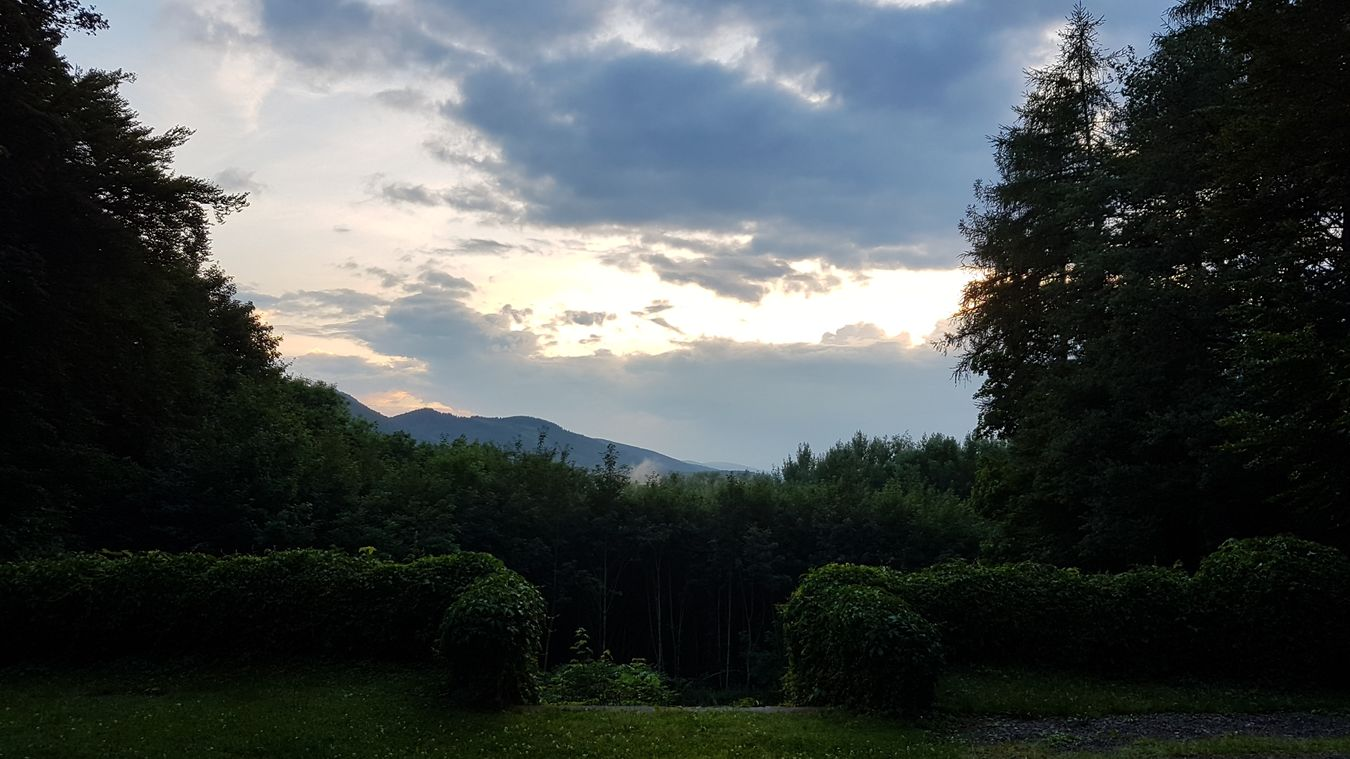 Beauty In Nature Cloud - Sky Day Grass Green Color Growth Idyllic Landscape Mountain Nature No People Outdoors Plant Scenics Sky Tranquil Scene Tranquility Tree