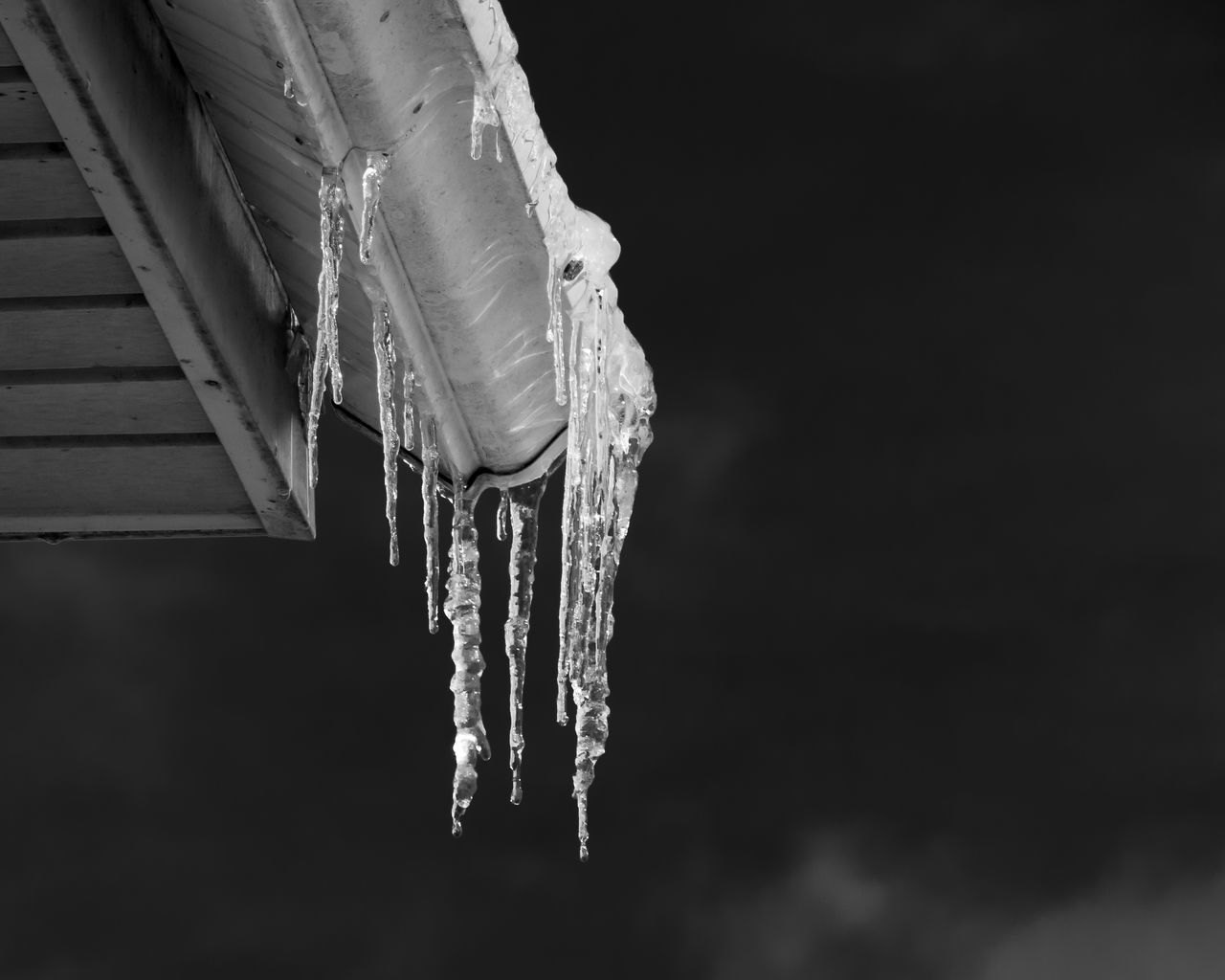 Black and White Ice Black And White Black And White Photography Black Background Cold Day Hanging Icicles No People Oudoors Winter