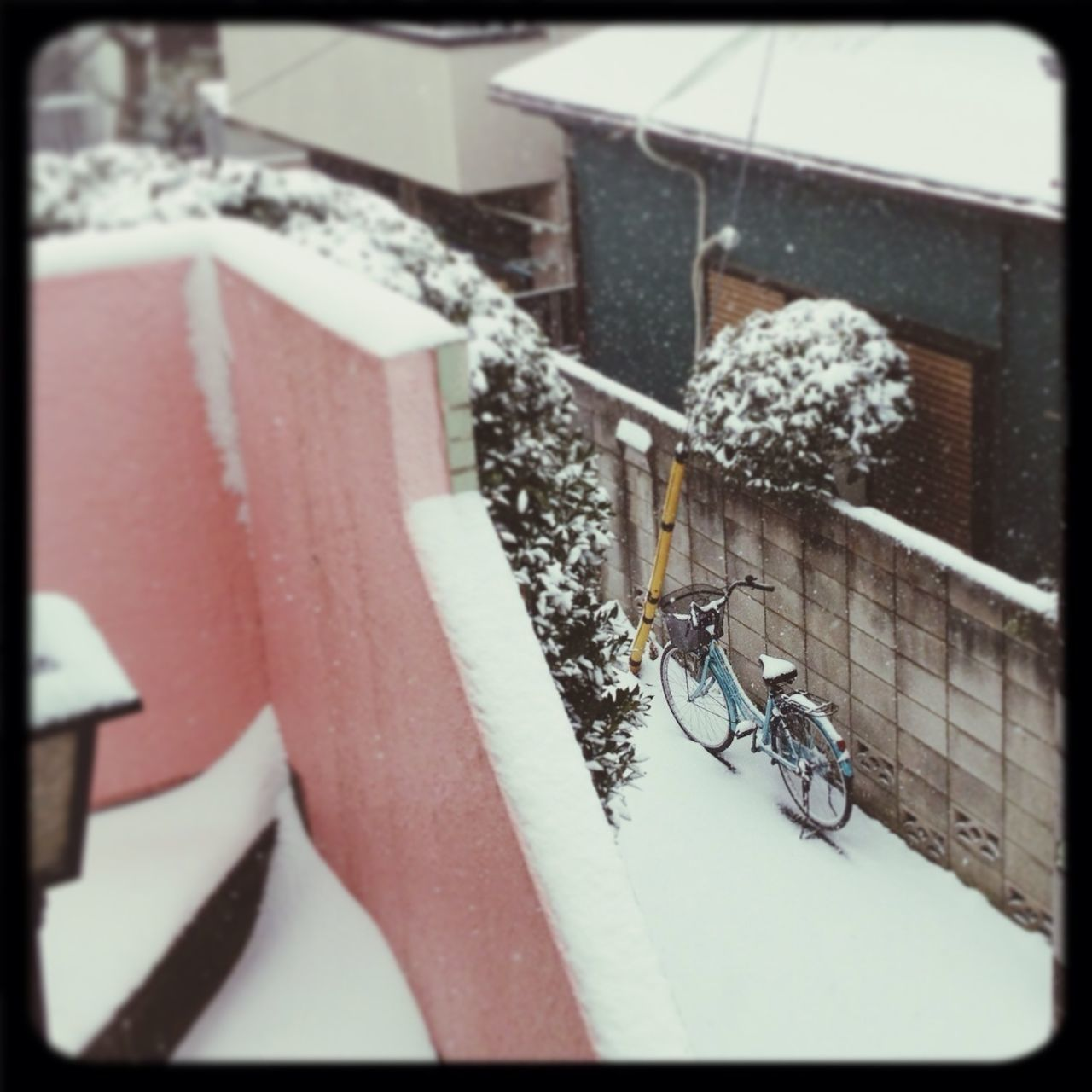 Good Mornig Tokyo!!! ...and my bike is getting full of snow. Snow ❄ Tokyo Winter Snowy Days... Just Around The Corner Celebrate Your Ride