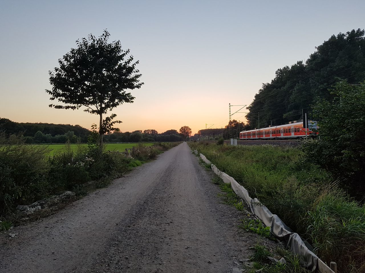 The Way Forward Tree Clear Sky Diminishing Perspective Tranquil Scene Transportation Tranquility Landscape Grass Empty Vanishing Point Field Nature Non-urban Scene Scenics Outdoors Sky Beauty In Nature Train Sunset Summer Day No People Nature Clear Sky
