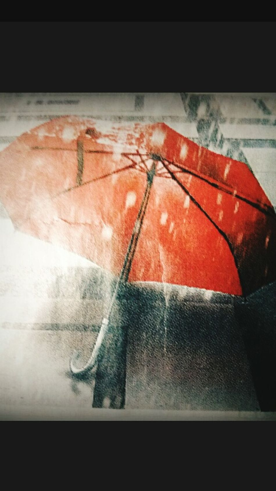 An umberella in rain.... Black And white