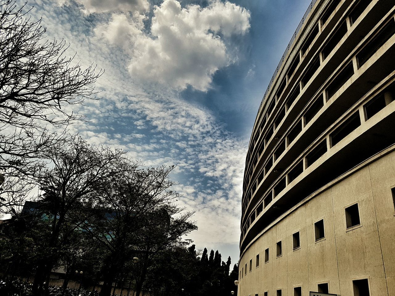 building exterior, tree, sky, architecture, built structure, low angle view, cloud - sky, no people, window, outdoors, day, city, nature