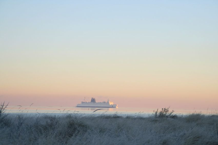 Ferry Boat Ostsee Baltic Sea foggy morning Foggy Weather Sea Nautical Vessel Water Horizon Over Water Transportation Boat Mode Of Transport Tranquil Scene Tranquility Sunset Scenics Clear Sky Ocean Nature Calm Beauty In Nature Non-urban Scene Vacations Plant Shore