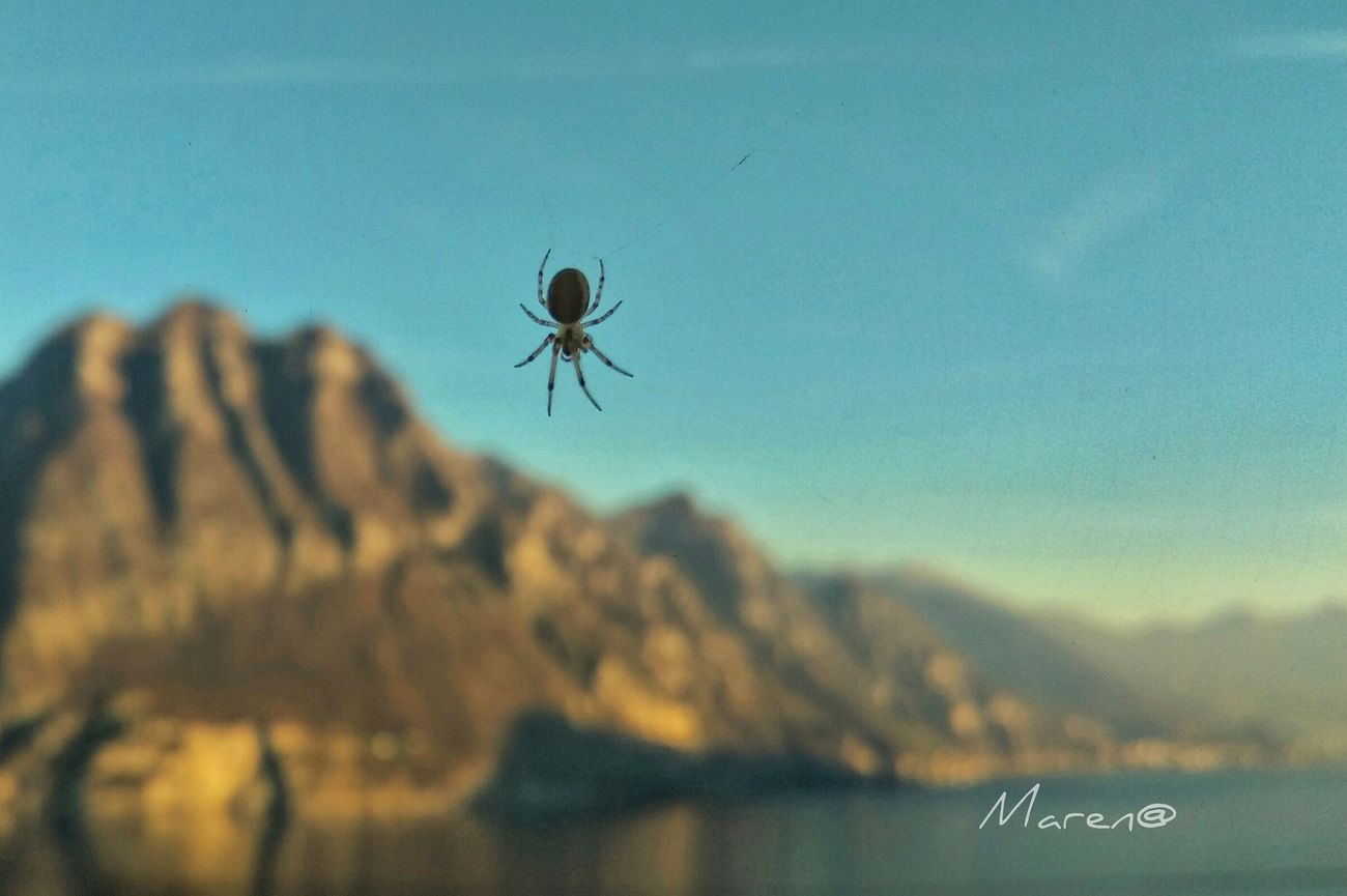 Visitlakeiseo First Eyeem Photo