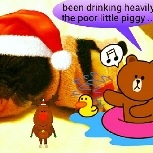 been drinking heavily the poor little piggy ...