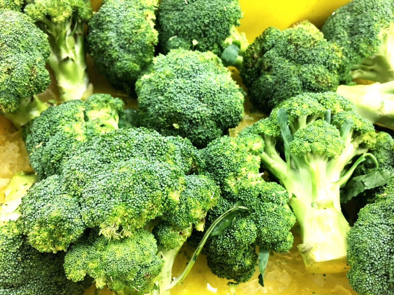 Green broccoli Broccoli Food Food And Drink Healthy Eating Still Life Vegetable Green Color Close-up Freshness No People Kale Indoors  Day Measuring Tape Healthy Lifestyle Healthy Food Healthy Diet Hard Dietfood Diet & Fitness Ready-to-eat Freshness Food And Drink Health