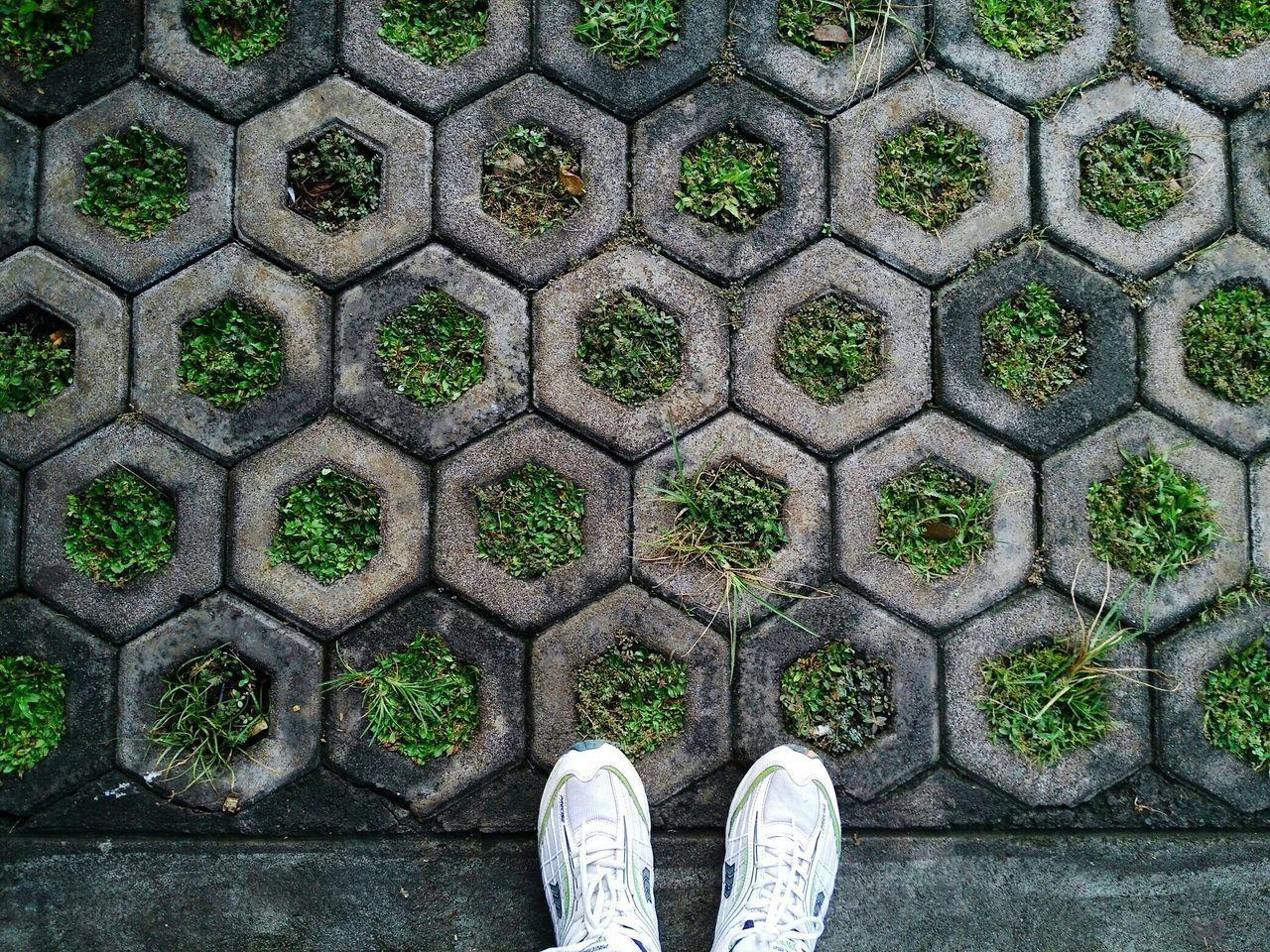 Beautiful stock photos of geometric, Day, Geometric Shape, Grass, High Angle View