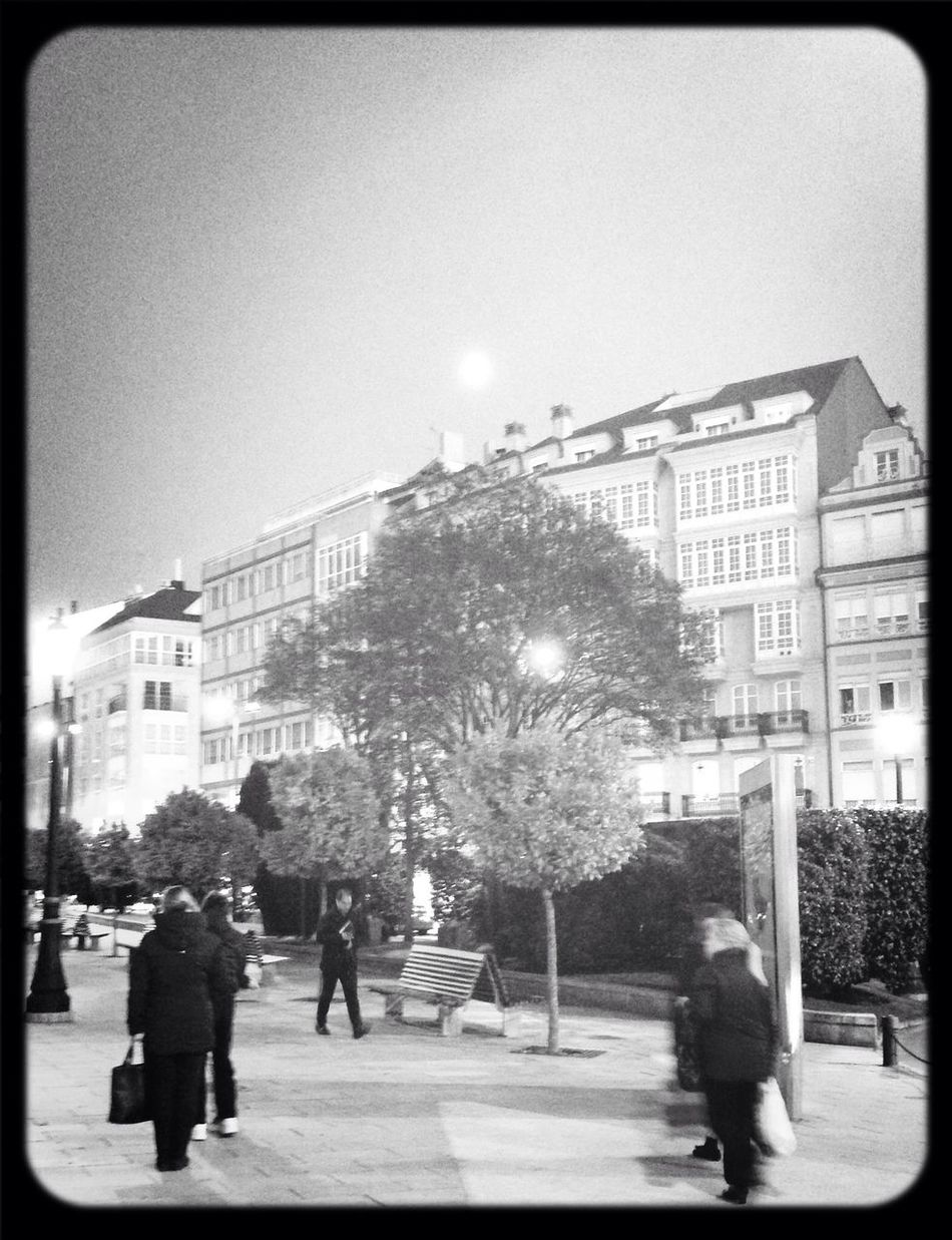 Walking with Moon