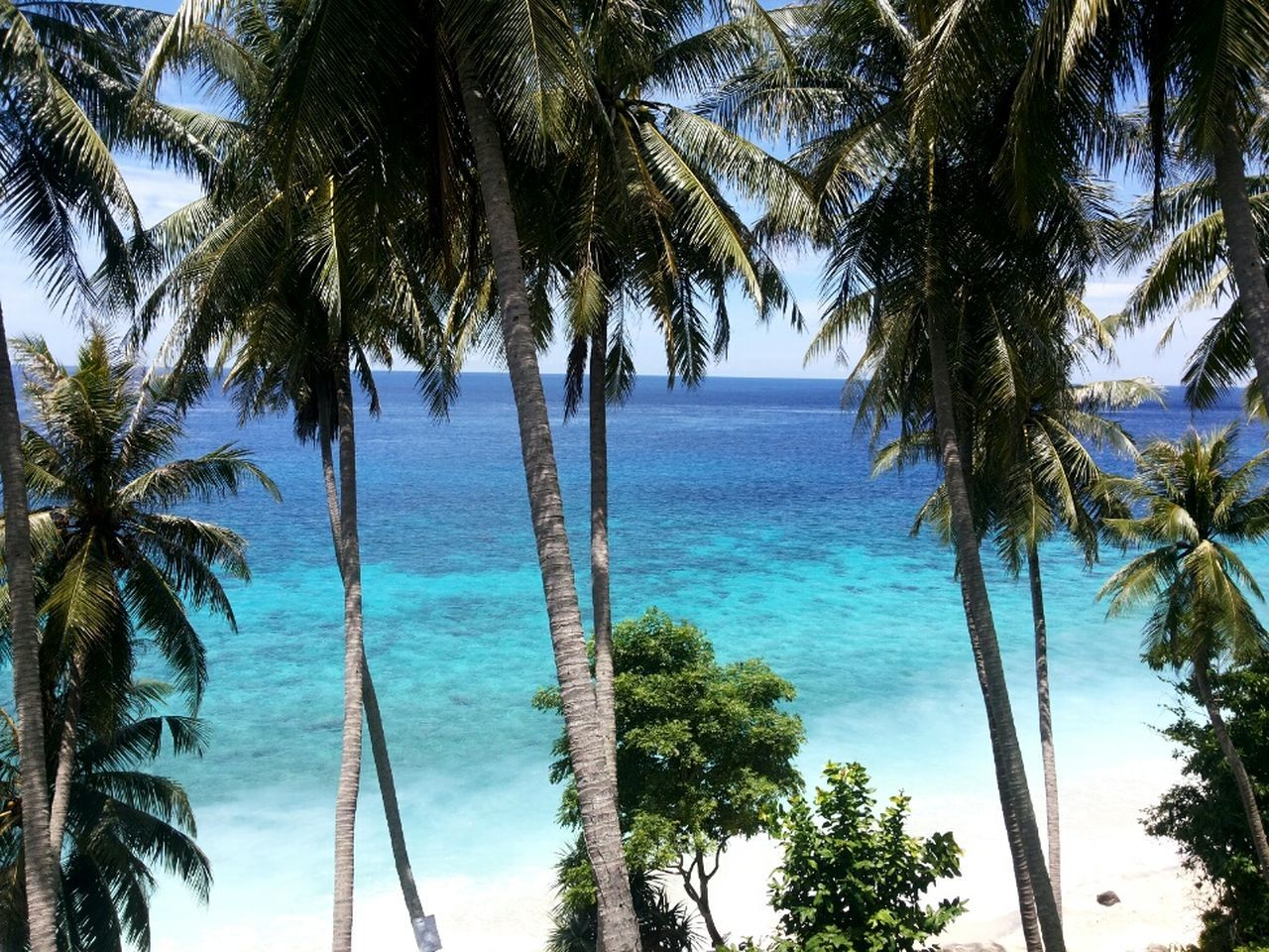 Life is better at the beach Thebodyshop Qoutes Summer Beachlife Sea And Sky Walktoexplore Aceh Indonesia Beach View Holiday Scenery PrivateBeach Palmtree Landscape Nature Photography Blue Water Green Nature Wonderfulindonesia Visitindonesia Aceh Tourism