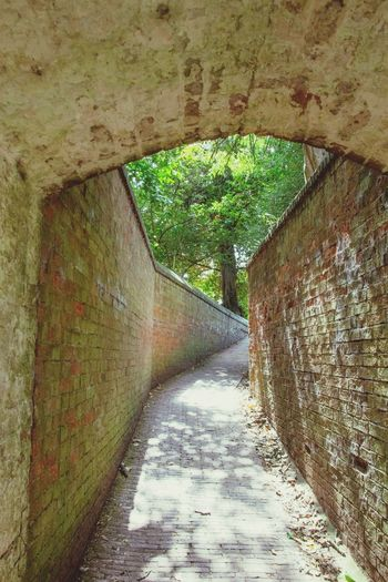 Wollaton Hall The Way Forward Day Tunnel Built Structure Architecture Sunlight No People Indoors  Nature