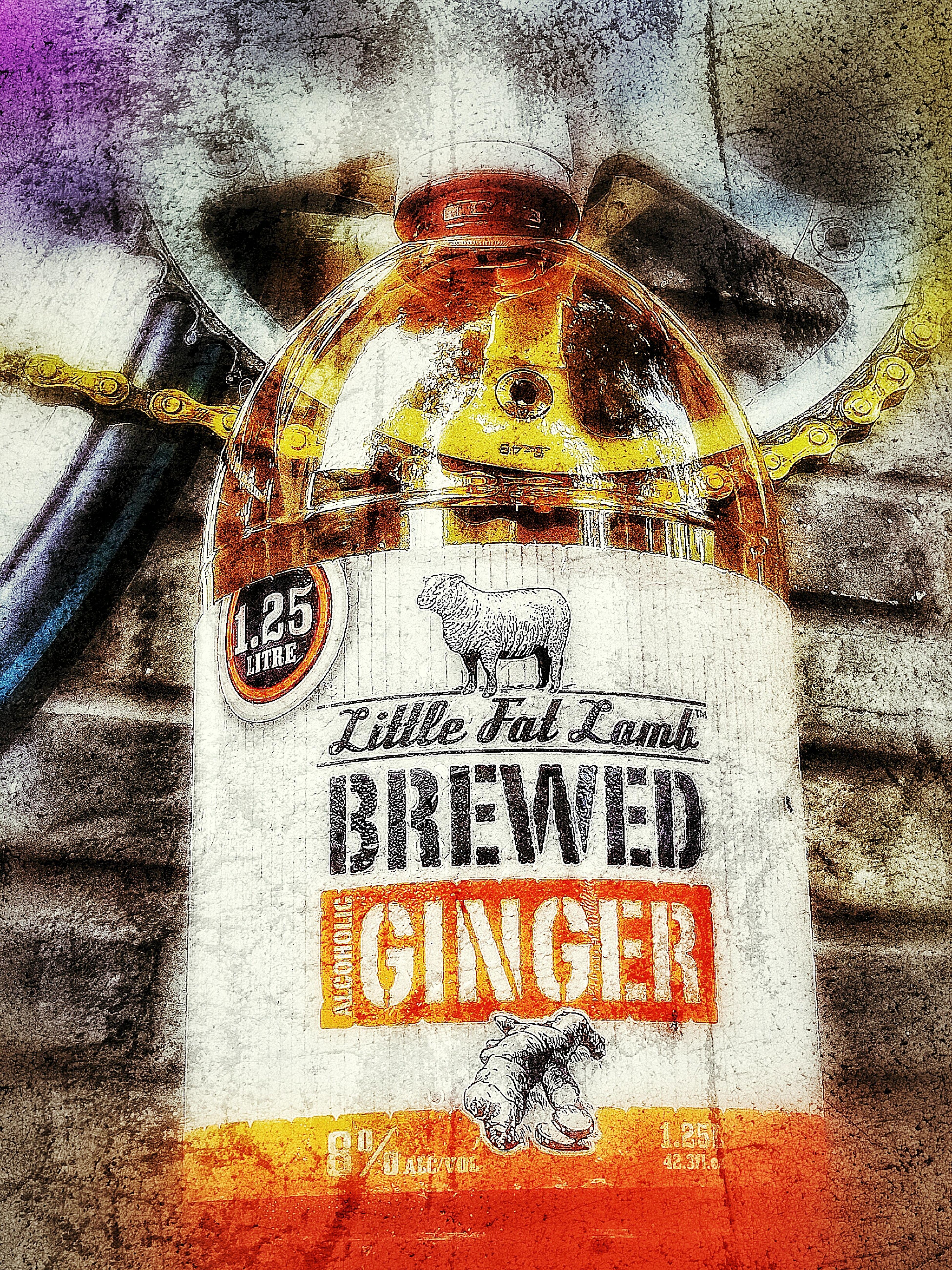 Little Fat Lamb Alcholic Beverage Ginger Beer Close-up Fixieporn