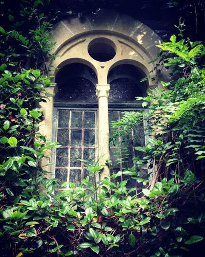 Secret View From A Secret Window First Eyeem Photo