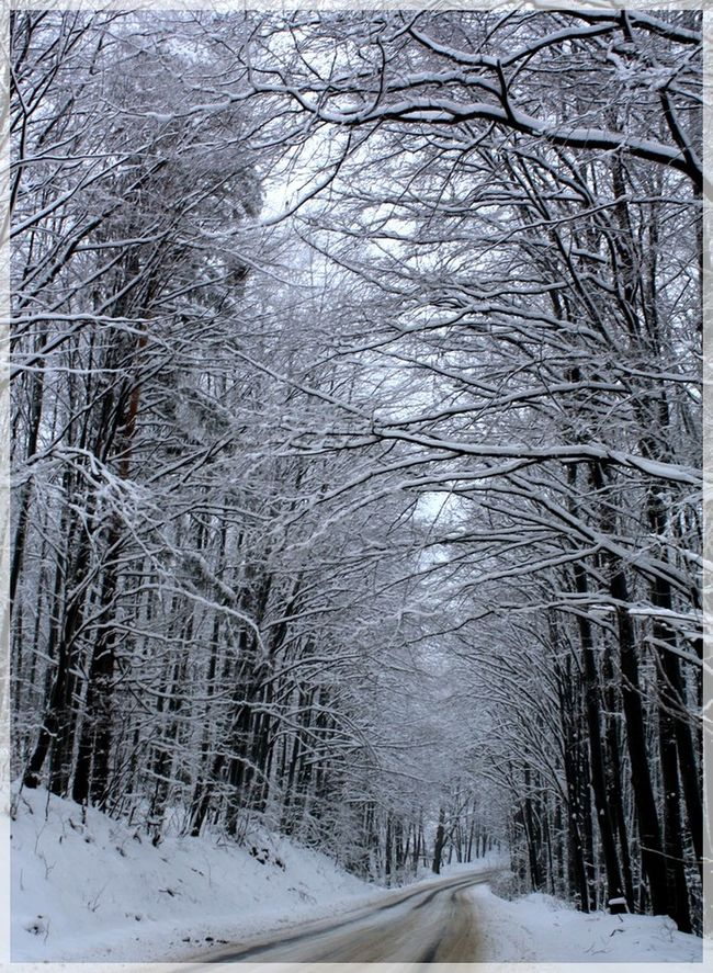 Winter Road Bükk