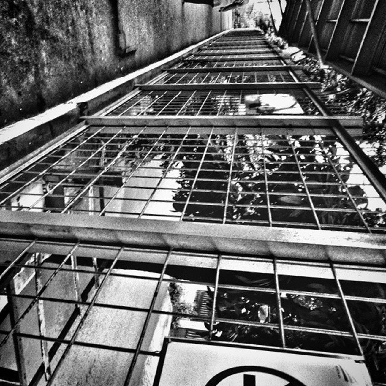 Pagar Jakarta @AcerID @FotoDroids @KoFiPon E3xploreMDK Fotodroids Pagar Jakarta noir unique