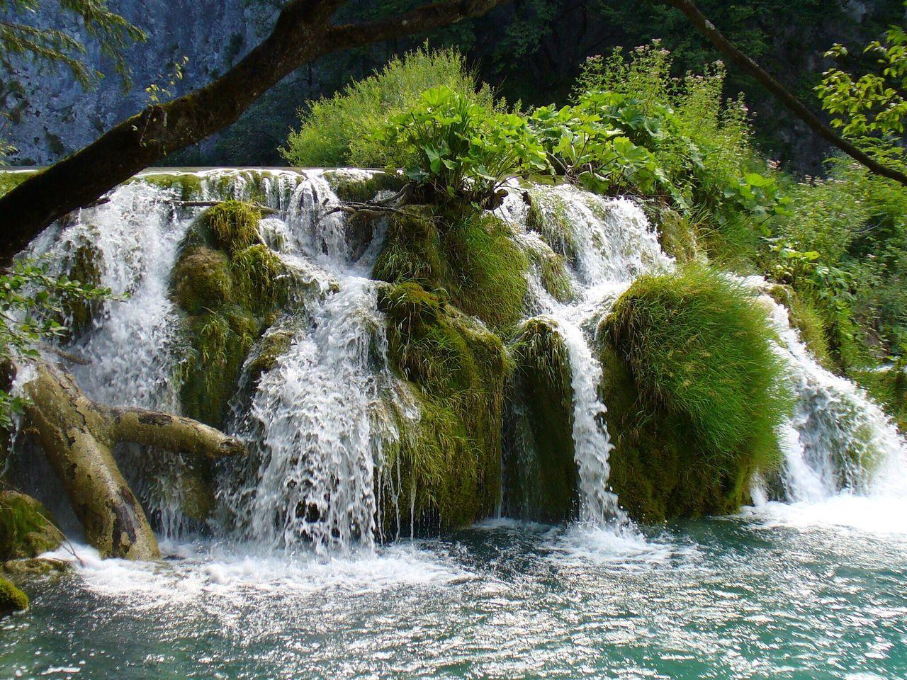 Waterfall Water Nature Scenics Beauty In Nature Tranquility Idyllic Forest No People Outdoors Vacations Tree Motion Day Freshness Lake Park Croatia Plitvice National Park Plitvice Lakes National Park Plitvice Beauty In Nature Moss Grass Green