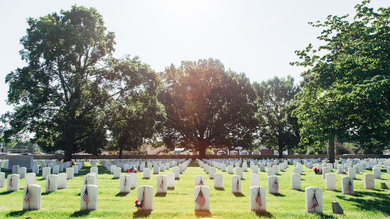 Beautiful stock photos of veteran's day, American Culture, American Flag, Cemetery, Day