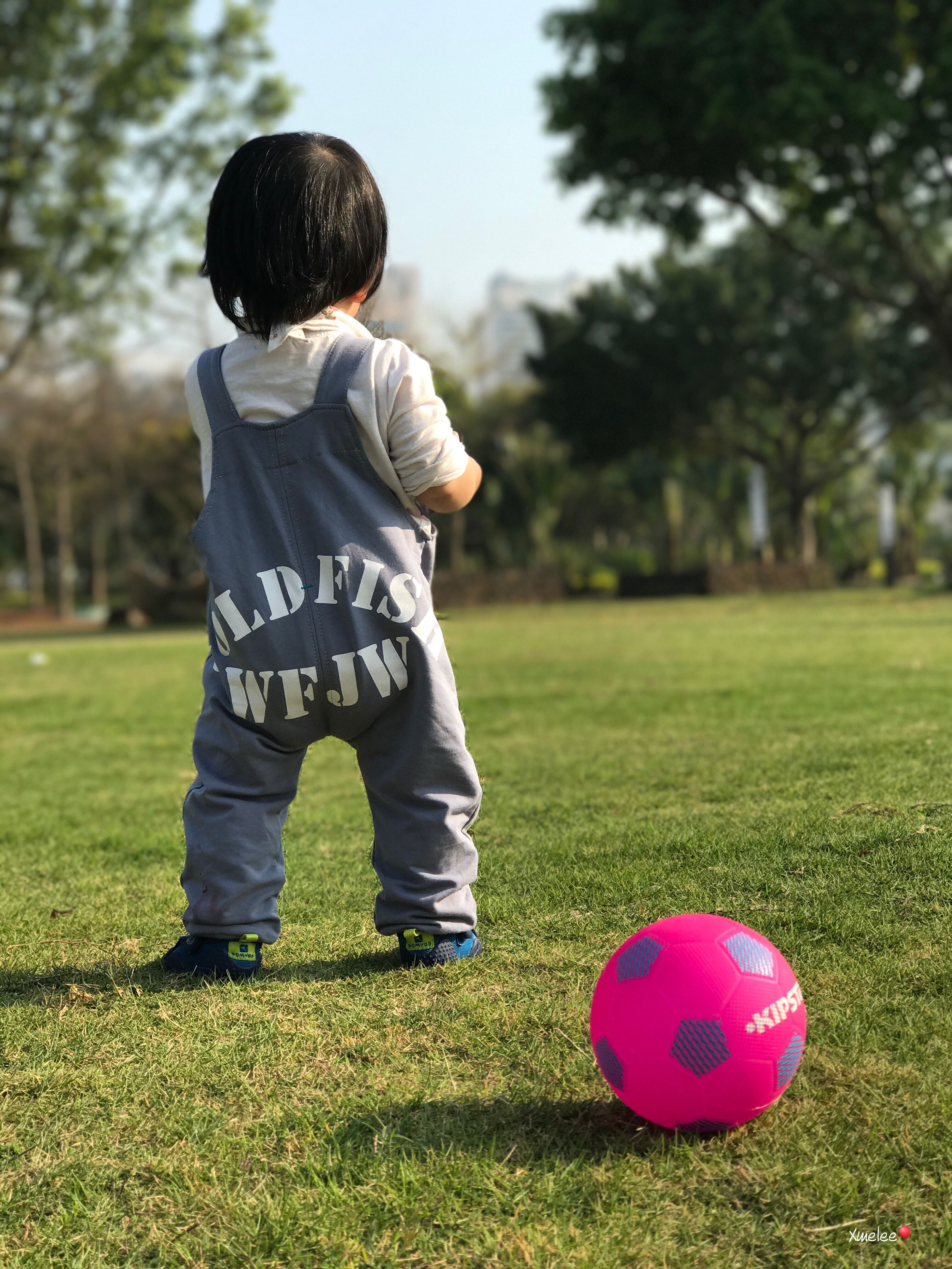 childhood, boys, grass, full length, one person, tree, one boy only, standing, casual clothing, rear view, playing, day, ball, park - man made space, child, outdoors, children only, real people, people