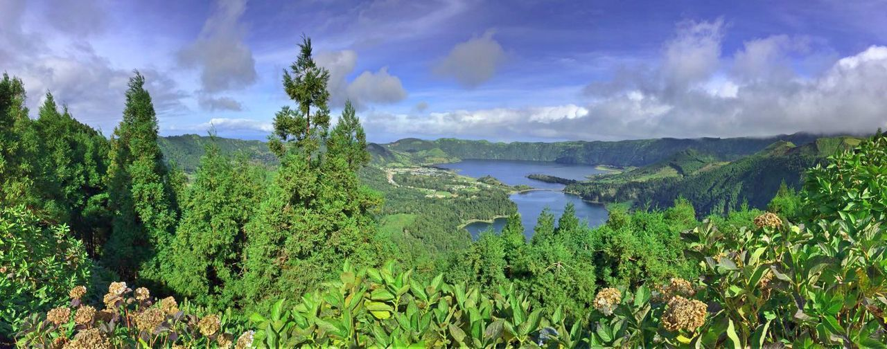 Azores Beauty In Nature Cloud - Sky Clouds Day Growth Lake Lake View Lakeside Landscape Mountain Nature Nature No People Outdoors Portugal Portugaligers Scenics Sky Sky And Clouds Tree Water First Eyeem Photo