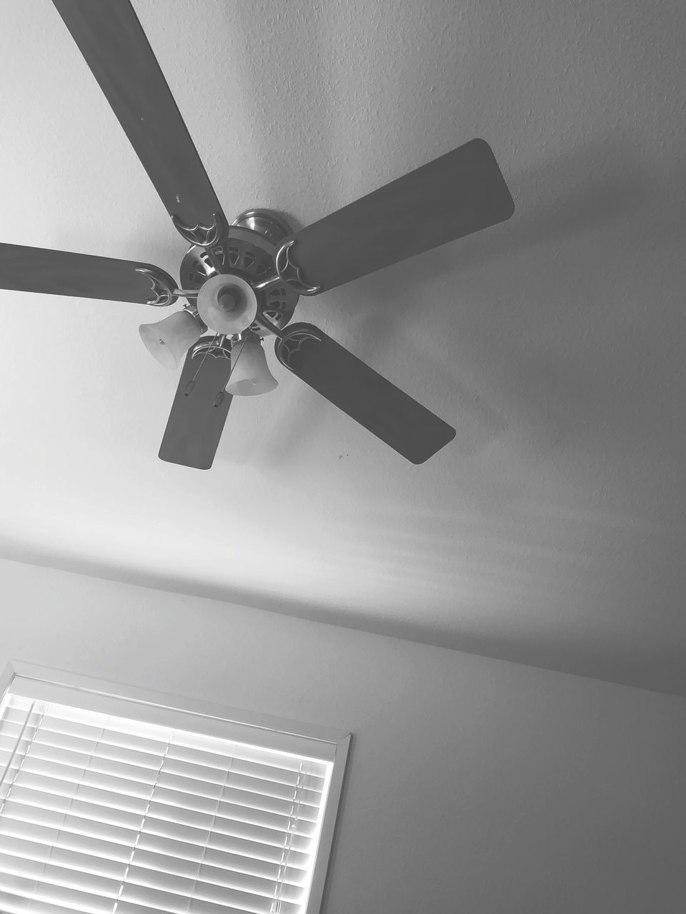 ceiling fan, low angle view, ceiling, indoors, electric fan, electricity, fan, home interior, technology, hanging, no people, architecture, close-up, day