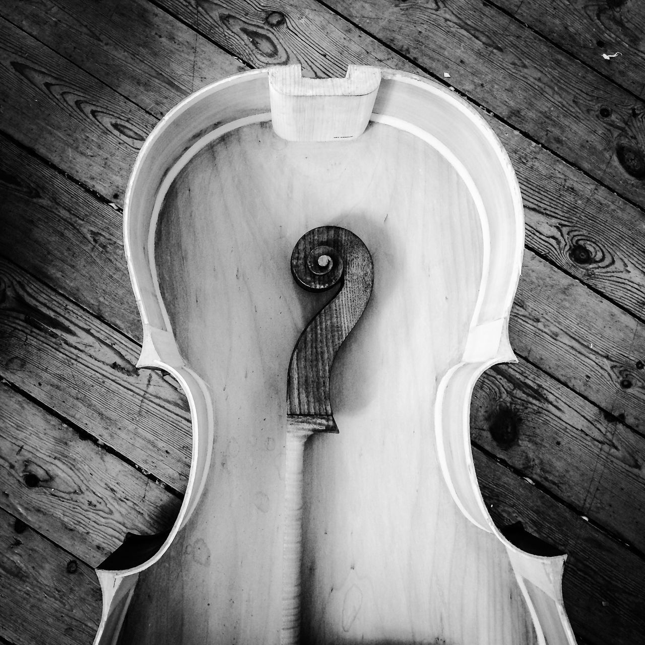 Black And White Collection  instrument Cello Lutherie Black&white Blackandwhite Photography