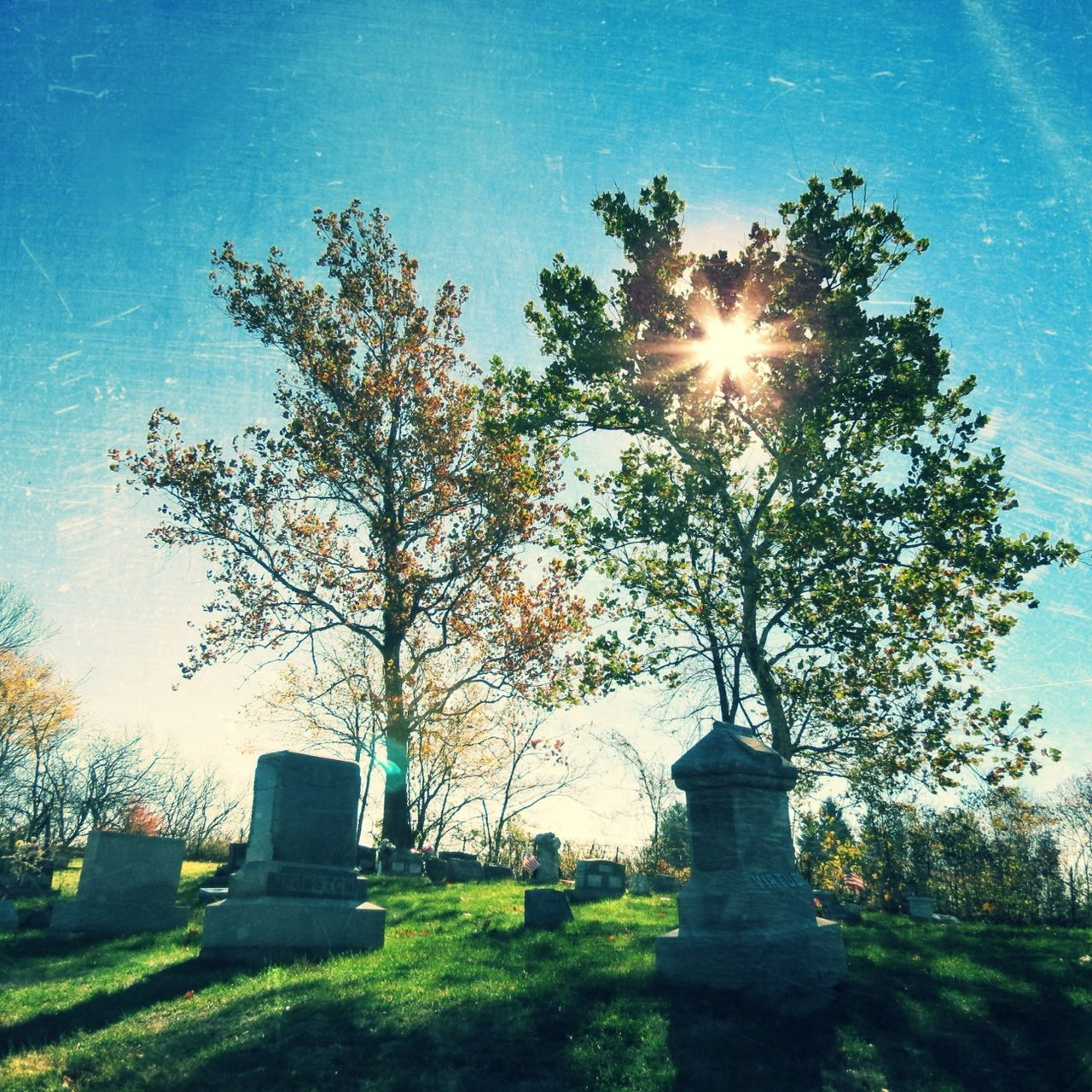 cemetery, tombstone, memorial, gravestone, tree, sunlight, graveyard, lens flare, no people, sunbeam, tranquility, grass, nature, sun, day, outdoors, landscape, sky, clear sky, beauty in nature