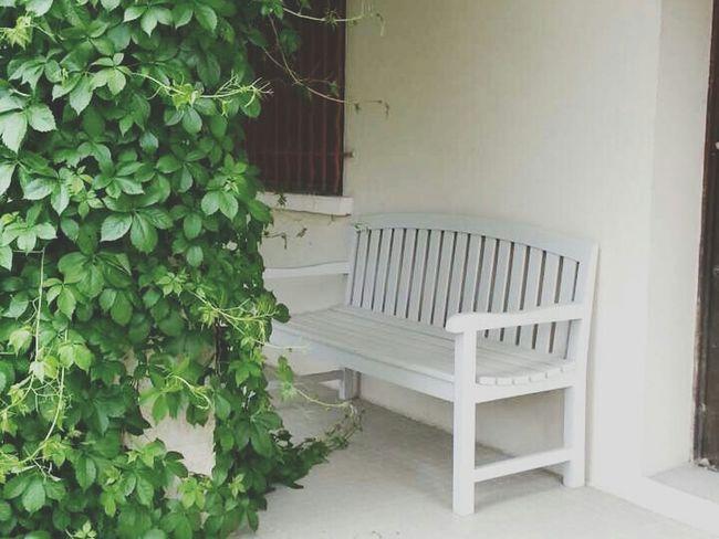 Banc Home Nature Photographie