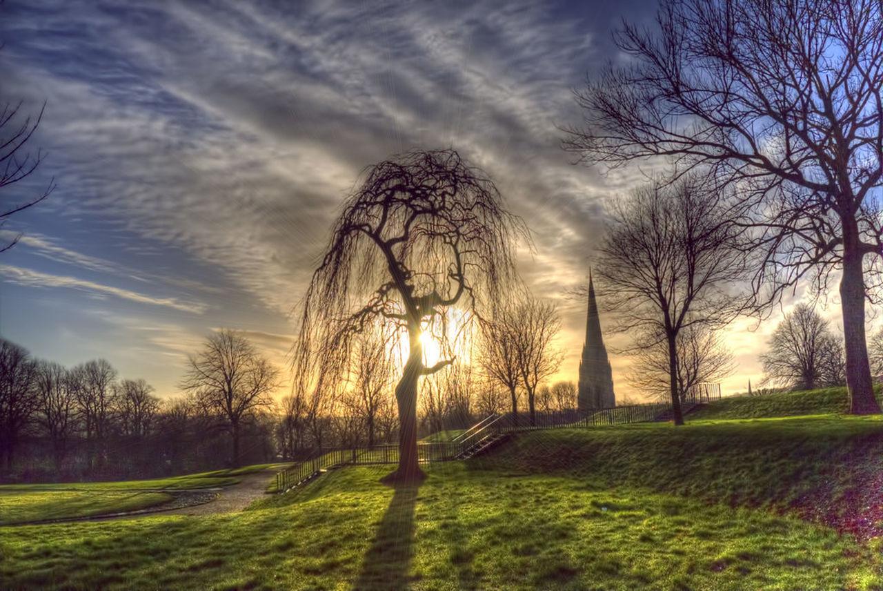Cloud - Sky Derrylondonderry Park Tree
