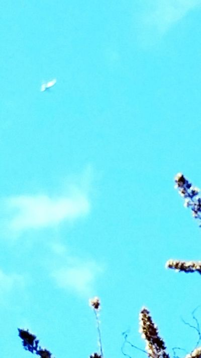 From My Point Of View View Above My Head Quicksnap Pointandshoot Sky Blurry Plane ✈