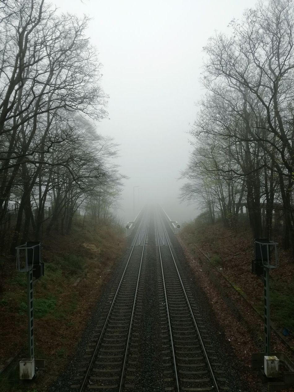 Railroad Track Fog Rail Transportation Tree Bare Tree Transportation No People The Way Forward Day Outdoors Sky Nature Beauty In Nature Springtime Foggy Foggy Weather Foggy Landscape Fog_collection Foggy Day Fog In The Trees Foggy Morning Foggyday Foggyweather Foggy Forest Foggy Afternoon