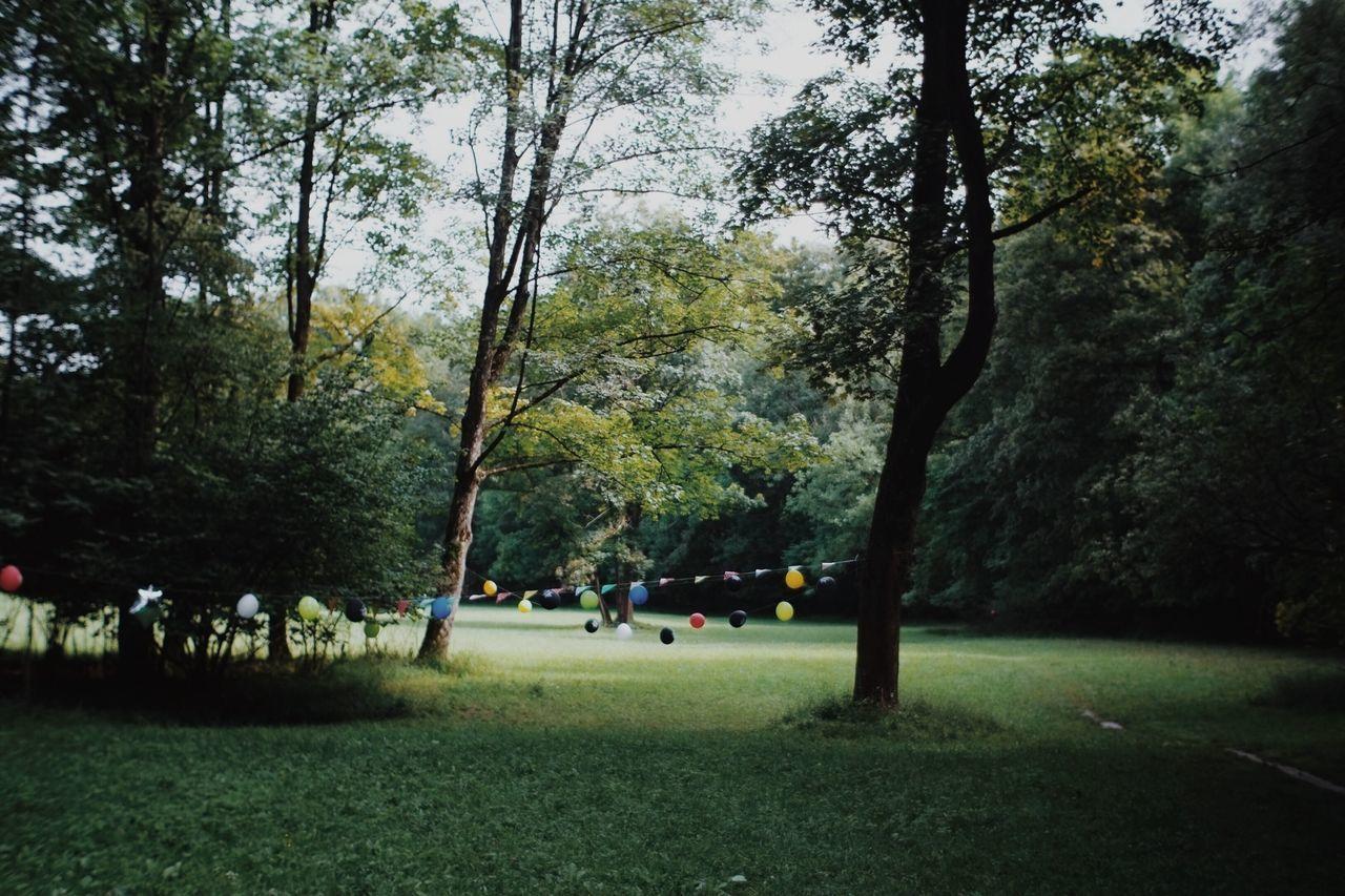 Beautiful stock photos of park, Celebration, Day, Decoration, Formal Garden