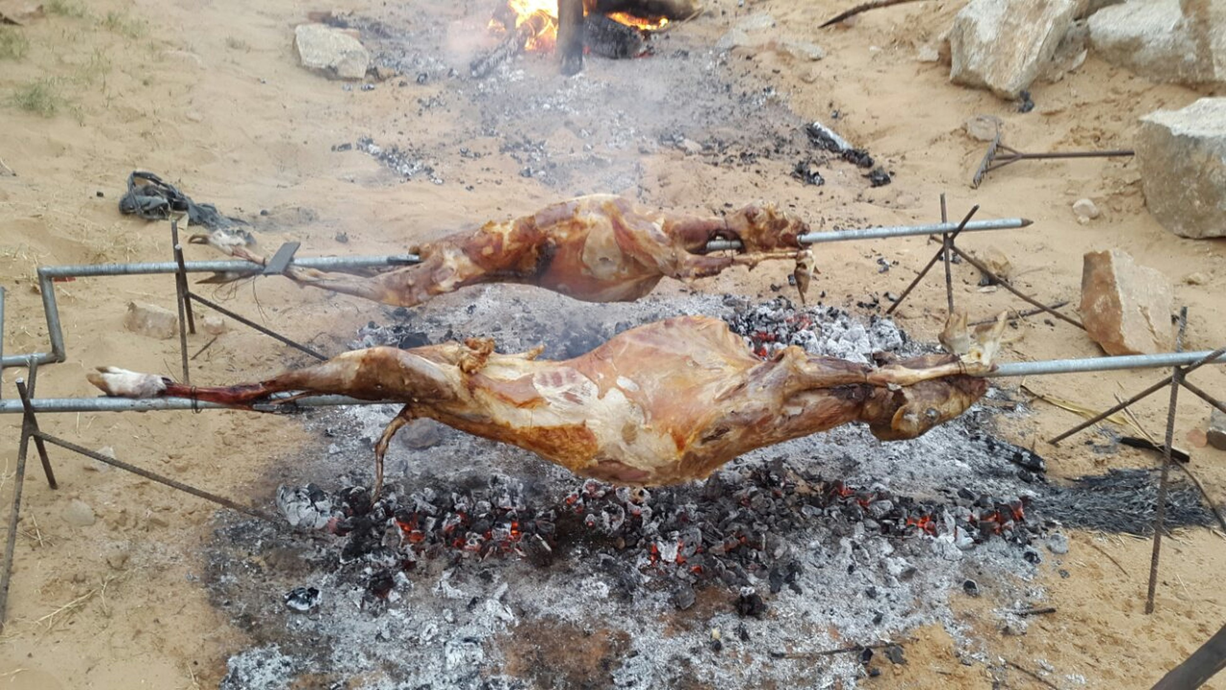 high angle view, heat - temperature, day, no people, messy, firewood, outdoors, dry, environmental issues, flame, dirty, burning, wood - material, dirt, sunlight, log, fire - natural phenomenon, close-up, preparation, dead animal