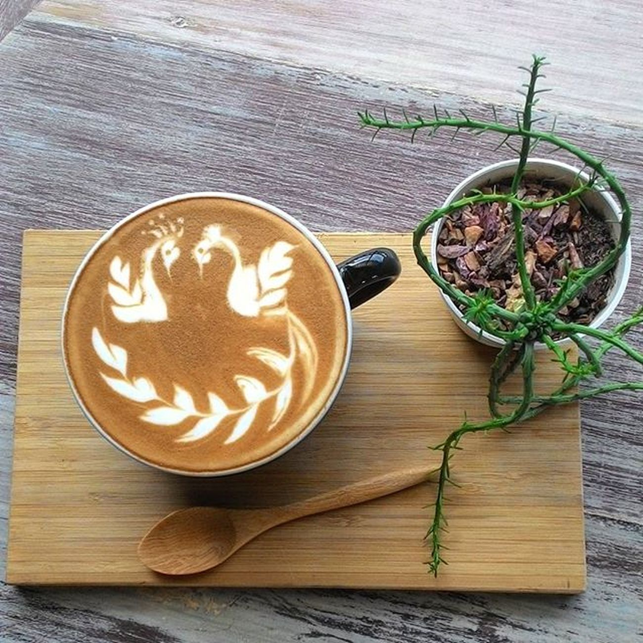 Two swan.pour with passion Latte art style by alisa.ทำงานที่เรารัก รัก รัก Coffee Coffeegeek Coffeetravel Freepourart Coffeeandwoman Coffeelover Coffeeinstragram Coffeeart Casalapin Casalapinbangna Barista Swan Latteart Latteartporn Latteartgram Milktexturing Coffeehopping Phographer Coffeejourney Folk Style Life Vscolatte Coffeeandgarden Vscocoffee cool ig_thailand instalatte instragramers igaddict