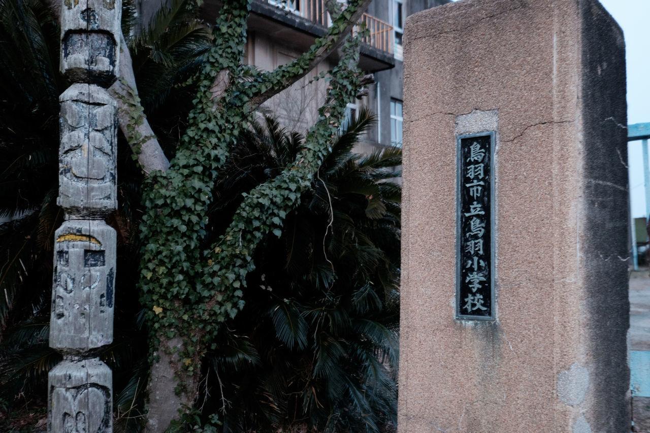 旧鳥羽小学校 Abandoned Fujifilm Fujifilm X-E2 Fujifilm_xseries Japan Japan Photography Ruined Scary Xf10-24mm 廃墟 恐い 旧鳥羽小学校 肝試し 鳥羽城 鳥羽城跡 鳥羽小学校 鳥羽市