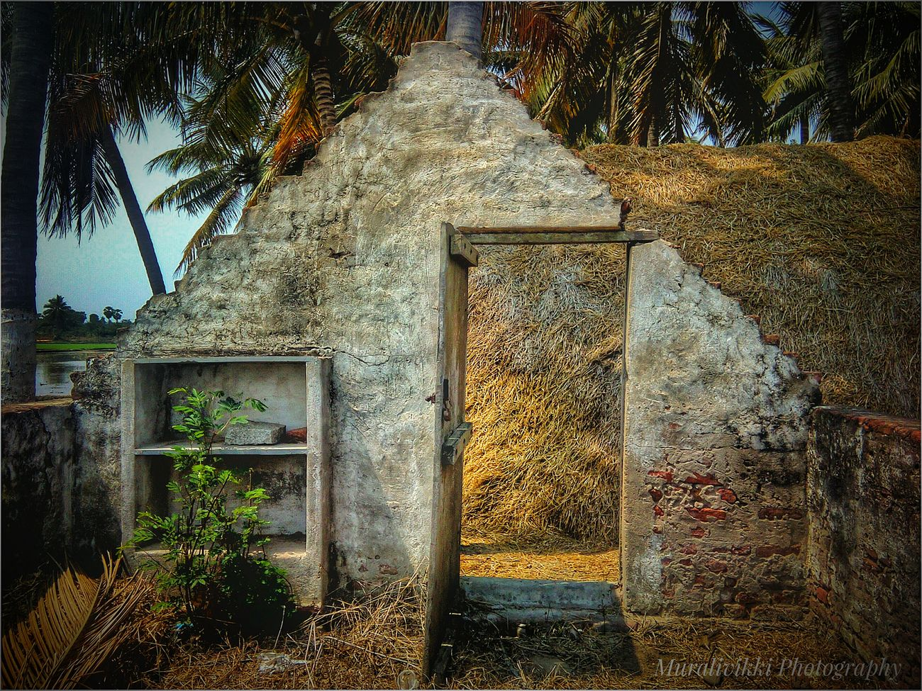 Old House Old But Awesome Old Architecture Architecture Built Structure Outdoors Building Exterior Home Sweet Home EyeEmGalley Summertime Eyeemphotography Bricks And Stones Bricks Arch Bricks In The Wall Oldpicture Villas Villagehouse Village Architecture Village Photography