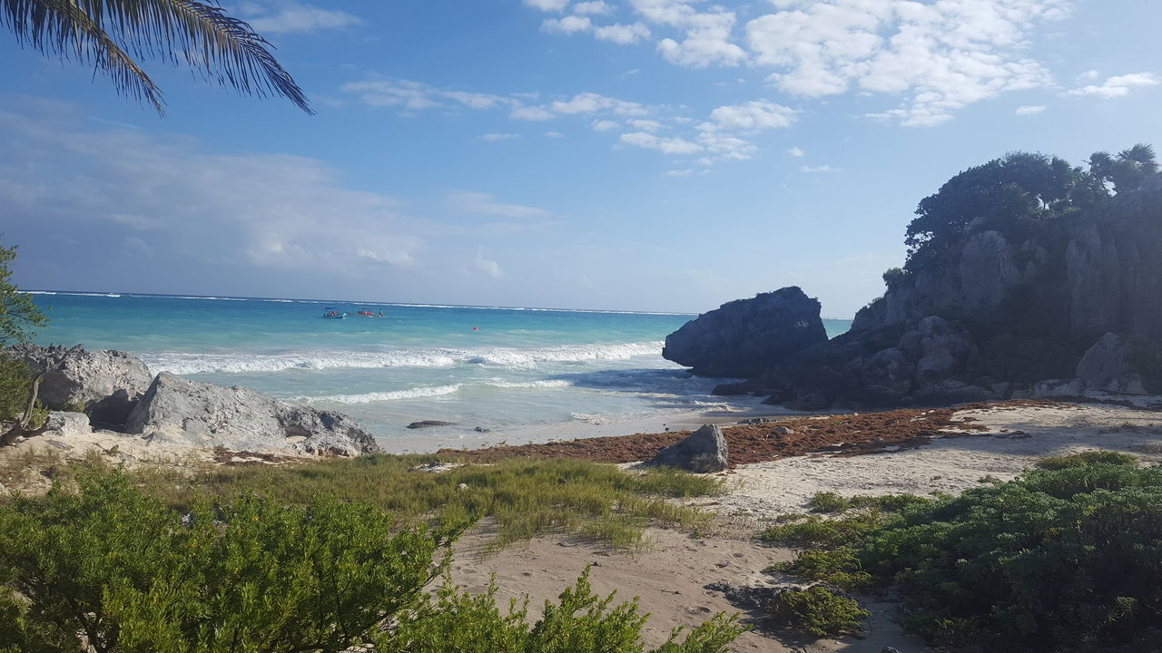 Tulum. Mexico Sea Beach Horizon Over Water Day Sky Water Nature Outdoors Nice Day America Tranquil Scene Silence Viajes  Travel Traveling Playa Beauty Verano Growth Nature Paradise ❤ Tranquility Beauty In Nature Scenics