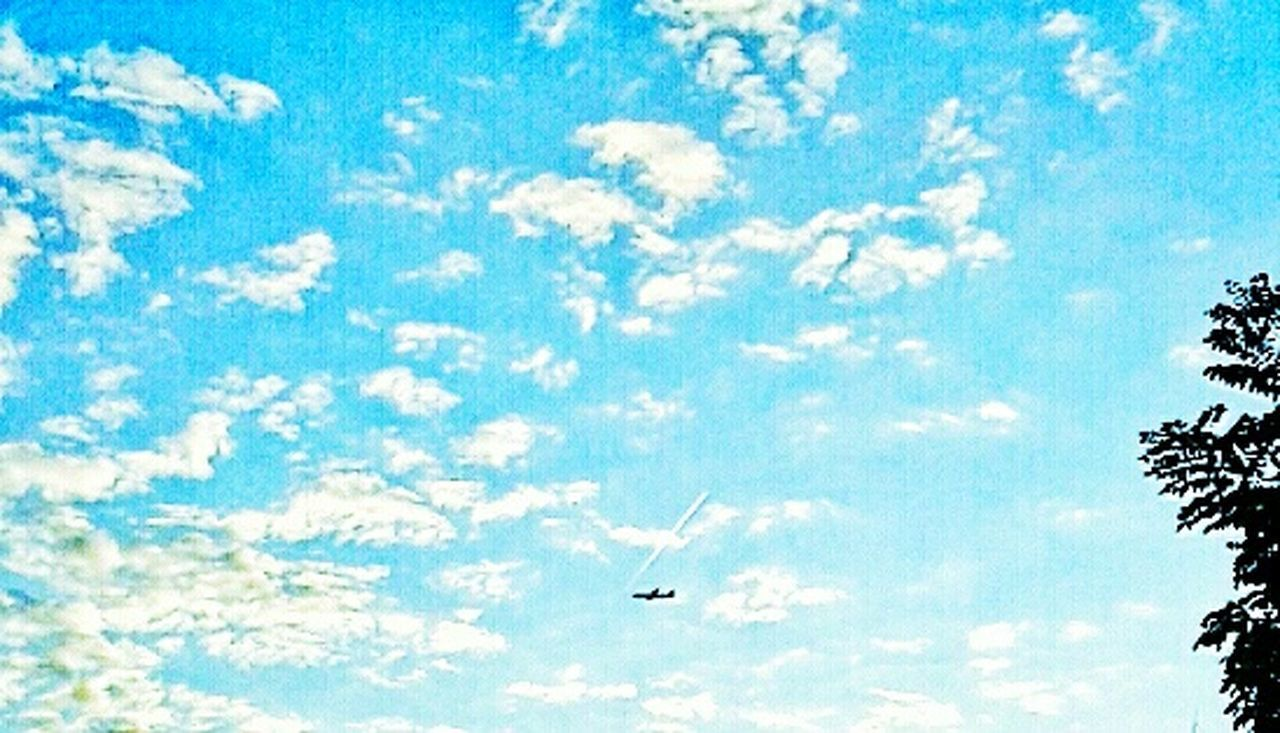 flying, sky, low angle view, airplane, cloud - sky, mid-air, day, nature, no people, outdoors, beauty in nature